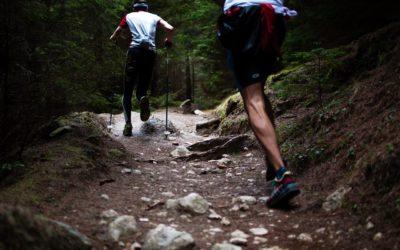 obozy biegowe 2019